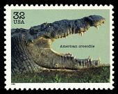 view 32c American Crocodile single digital asset number 1