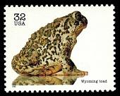 view 32c Wyoming Toad single digital asset number 1
