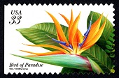 view 33c Bird of Paradise booklet single digital asset number 1