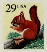 view 29c Red Squirrel single digital asset number 1
