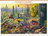 view 33c Sonora Desert pane of ten digital asset number 1