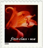 view First-Class (34c) Flower (Day Lily) booklet single digital asset number 1