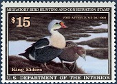 view $15 multicolor King Eiders single digital asset number 1