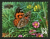 view 34c Painted Lady Butterfly and American Buffalo single digital asset number 1