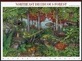 view 37c Northeast Deciduous Forest pane of ten digital asset number 1