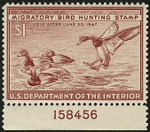 view $1 red brown Redhead Ducks plate number single digital asset number 1