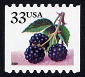 view 33c Blackberries single digital asset number 1