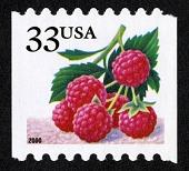 view 33c Raspberries single digital asset number 1