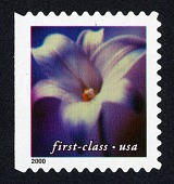 view First Class (34c) Purple Flower single digital asset number 1