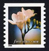 view First Class (34c) Green Flower single digital asset number 1