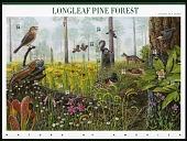 view 34c Longleaf Pine Forest pane of ten digital asset number 1