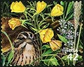 view 42c Vesper Sparrow single digital asset number 1