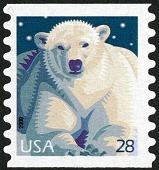 view 28c Polar Bear single digital asset number 1