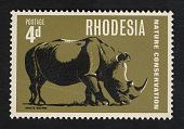 view 4p White Rhinoceros single digital asset number 1