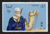 view 50m Tuareg and Camel single digital asset number 1