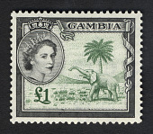 view £1 Elephant Badge of Gambia single digital asset number 1