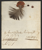 view Swedish feather letter digital asset number 1