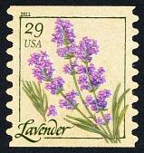 view 29c Herbs: Lavender single digital asset number 1