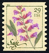 view 29c Herbs: Sage single digital asset number 1