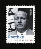 view Forever Twentieth-Century Poets: Theodore Roethke single digital asset number 1