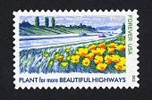 view Forever Lady Bird Johnson: Beautiful Highways single digital asset number 1