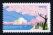 view Forever Cherry Blossom Centennial: Jefferson Memorial single digital asset number 1