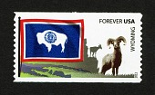 view Forever Wyoming Flag and Bighorn Sheep coil single digital asset number 1