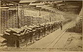 view Liberty Bonds promotional postcard digital asset number 1