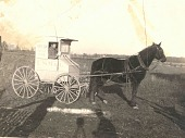 view Photograph of rural carrier with horse and wagon digital asset number 1