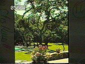view [Unidentified Garden in California]: a corner of the swimming pool and adjacent grounds. digital asset: [Unidentified]: a corner of the swimming pool and adjacent grounds.: 1965.