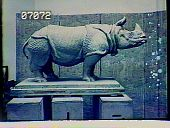 view [The Chimneys]: rhinoceros sculpture. digital asset: [The Chimneys] [slide (photograph)]: rhinoceros sculpture.
