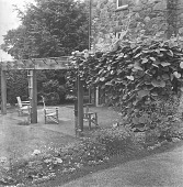 view [Abrams Garden]: vine-covered pergola and seating. area. digital asset: [Abrams Garden] [safety film negative]: vine-covered pergola and seating. area.