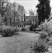 view [Elliot Garden]: looking toward house and trees across shrub and bulb borders. digital asset: [Elliot Garden] [safety film negative]: looking toward house and trees across shrub and bulb borders.