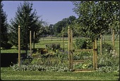 view [Miscellaneous Garden Structures and Features]: deer fence surrounding garden. digital asset: [Miscellaneous Garden Structures and Features] [slide (photograph)]: deer fence surrounding garden.