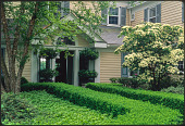 view [Johnson Garden]: house entrance, showing dense, low-cut hedges and other plantings. digital asset: [Johnson Garden] [slide (photograph)]: house entrance, showing dense, low-cut hedges and other plantings.
