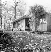 view [Coffey Garden]: view of house, with climbing plant at right center. digital asset: [Coffey Garden] [contact print]: view of house, with climbing plant at right center.