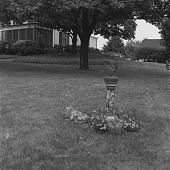 view [Moore Garden]: looking from rose garden area toward house. digital asset: [Moore Garden] [safety film negative]: looking from rose garden area toward house.