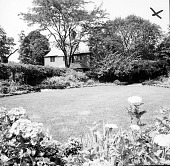view [Watson Garden]: looking across circular lawn toward house, with vine-covered iron pergola on left and gazebo-like structure in right center. digital asset: [Watson Garden] [contact print]: looking across circular lawn toward house, with vine-covered iron pergola on left and gazebo-like structure in right center.