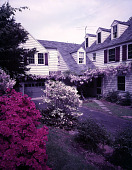 view [Unidentified Gardens in Unknown Locations]: springtime garden scene, showing azalea and wisteria, with Colonial Revival house in the background. digital asset: [Unidentified Gardens in Unknown Locations] [film transparency]: springtime garden scene, showing azalea and wisteria, with Colonial Revival house in the background.