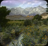 view Mount Whitney digital asset: Mount Whitney: [between 1914 and 1949?]