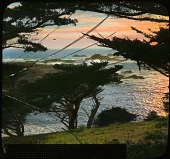 view Point Lobos, view from digital asset: Point Lobos, view from: [between 1914 and 1949?]