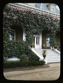 view [Kearney Park]: close-up view of the Superintendents Lodge on M. Theo Kearney's Fruit Vale Estate and Cecile Brunner Climbing Rose. digital asset: [Kearney Park] [slide]: close-up view of the Superintendents Lodge on M. Theo Kearney's Fruit Vale Estate and Cecile Brunner Climbing Rose.