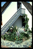 view [Untitled Garden in Los Angeles, California]: corner bed beneath guest house. digital asset: [Untitled Garden in Los Angeles, California] [slide]: corner bed beneath guest house.
