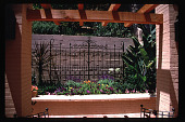 view [Untitled Garden in Hollywood, California]: wrought iron featured in raised planter. digital asset: [Untitled Garden in Hollywood, California] [slide]: wrought iron featured in raised planter.