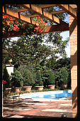view [Untitled Garden in Hollywood, California]: existing pool adjacent to pergola with terra cotta planters. digital asset: [Untitled Garden in Hollywood, California] [slide]: existing pool adjacent to pergola with terra cotta planters.