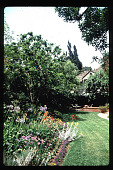 view [Untitled Garden in Los Angeles, California]: rear garden overview with flower beds. digital asset: [Untitled Garden in Los Angeles, California] [slide]: rear garden overview with flower beds.