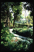 view [Untitled Garden in Los Angeles, California]: overview of garden with decomposed granite path. digital asset: [Untitled Garden in Los Angeles, California] [slide]: overview of garden with decomposed granite path.