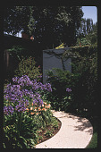 view [Untitled Garden in Los Angeles, California]: curving exposed aggregate pathway. digital asset: [Untitled Garden in Los Angeles, California] [slide]: curving exposed aggregate pathway.