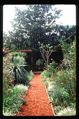 view [Untitled Garden in Beverly Hills, California]: crushed red rock pah and perennial beds. digital asset: [Untitled Garden in Beverly Hills, California] [slide]: crushed red rock pah and perennial beds.
