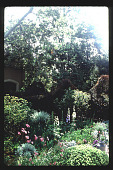 view [Untitled Garden in Beverly Hills, California]: perennial and annual plantings near pool. digital asset: [Untitled Garden in Beverly Hills, California] [slide]: perennial and annual plantings near pool.